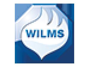 logo Wolfs